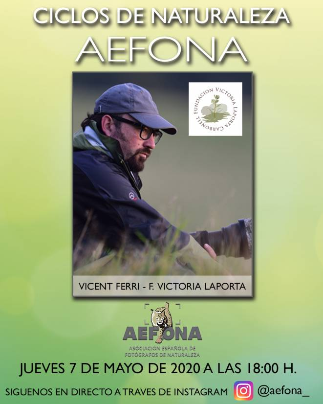 cartel-redes-vicent-ferri